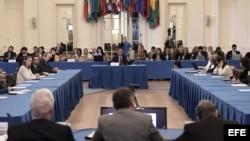 El magistrado del Tribunal Supremo paralelo que designó en julio el Parlamento venezolano, de mayoría opositora, Pedro Troconis (c), habla durante la audiencia pública en la OEA.