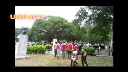 Policía detiene a varios activistas de la UNPACU