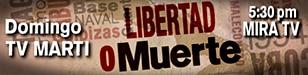 Promo - Libertad o muerte - 308 x 75