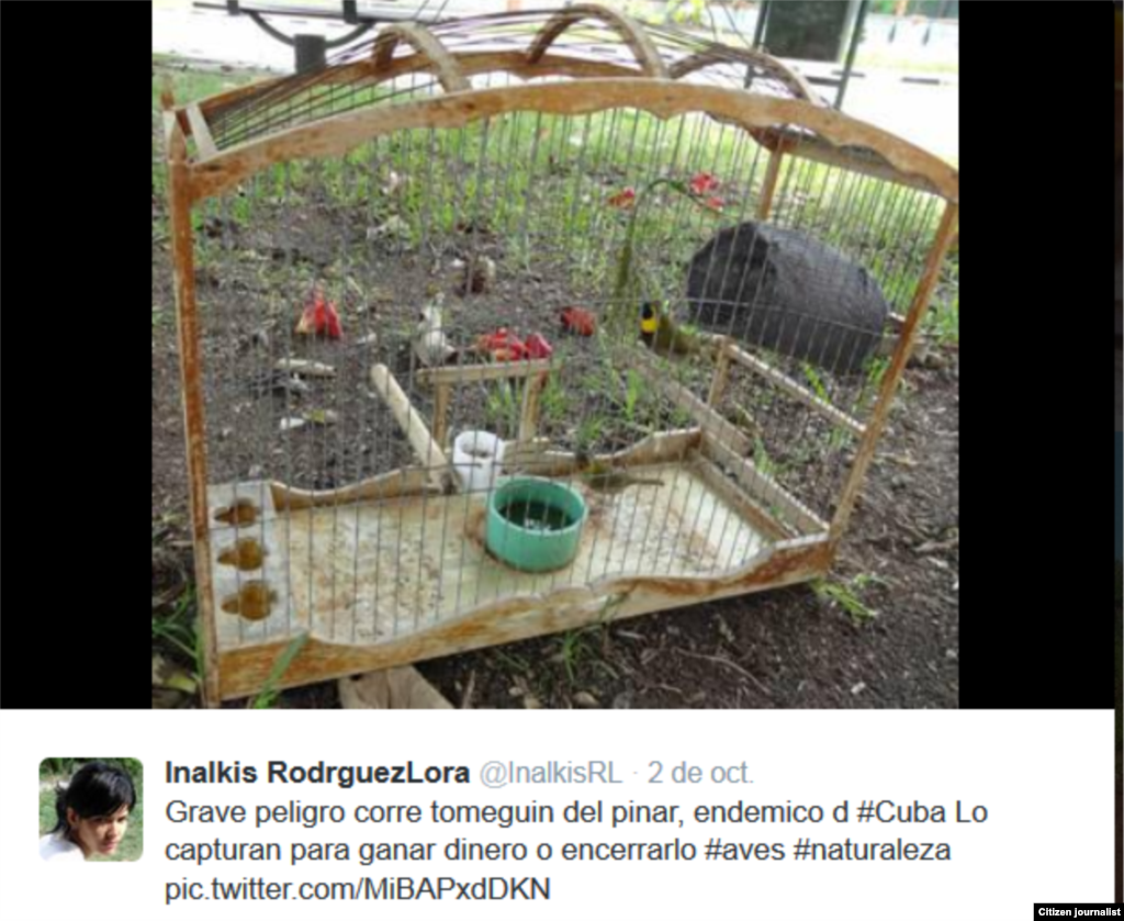 Inalkis Rodríguez en defensa de la naturaleza
