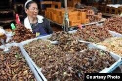 Problema cultural: En Asia los insectos se venden cual papitas fritas, pero en países como Cuba provocan asco.