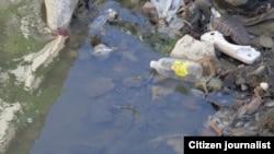 La falta de higiene estaría acelerando el cólera y el dengue en Cuba.