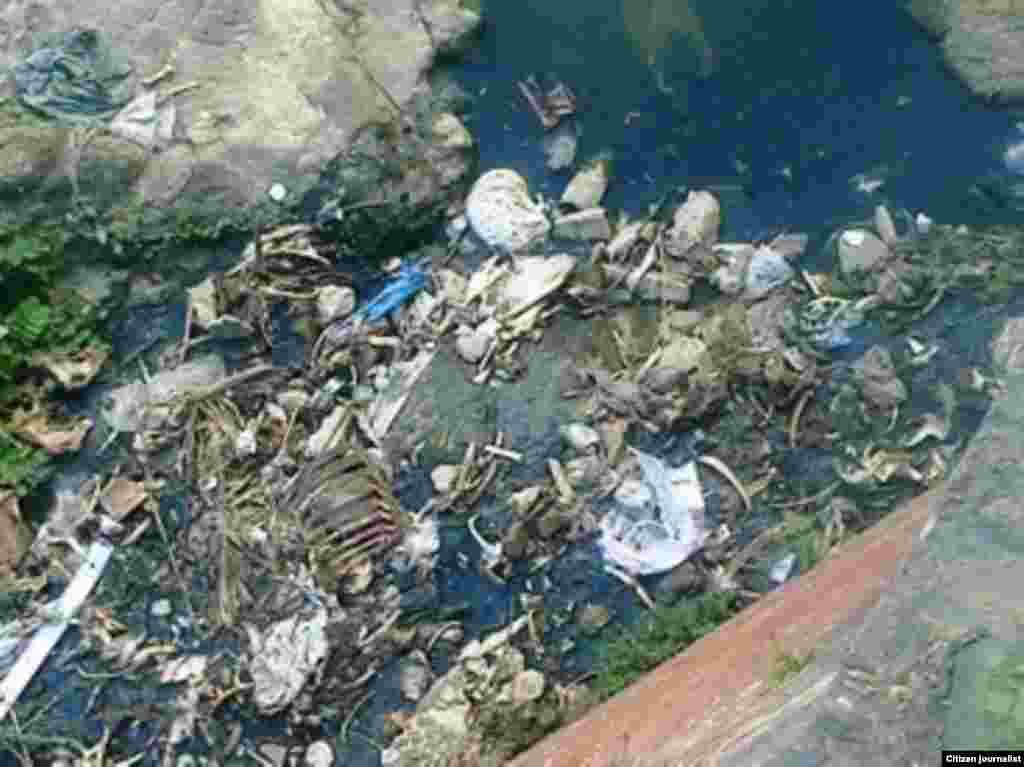 Reporta Cuba contaminacion río Bélico en Santa Clara.