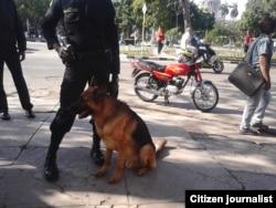 Red Cubana de Comunicadores / foto-reportaje de Juliet Michelena