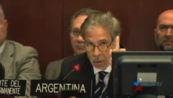 Miembros de la OEA se debaten entre la aplicación o no de la Carta Democrática a Venezuela