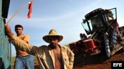 Obreros cañeros en Calimete, provincia de Matanzas (Cuba)