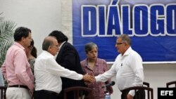 El jefe del equipo negociador del Gobierno de Colombia, Humberto de la Calle (i) saluda al comandante de las FARC, Rodrigo Granda (d) durante la lectura de un comunicado conjunto en La Habana.