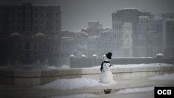 El muñeco de nieve de Gastón Baquero