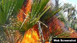 Incendio en la región oriental de Cuba.