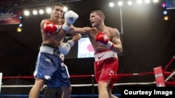Boxeadores estadounidenses