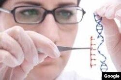La nueva tecnología busca desarrollar embriones más saludables.
