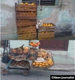 Reporta Cuba. Venta de mangos. Foto: Ridel Brea.