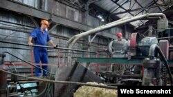 Obreros en un central azucarero.
