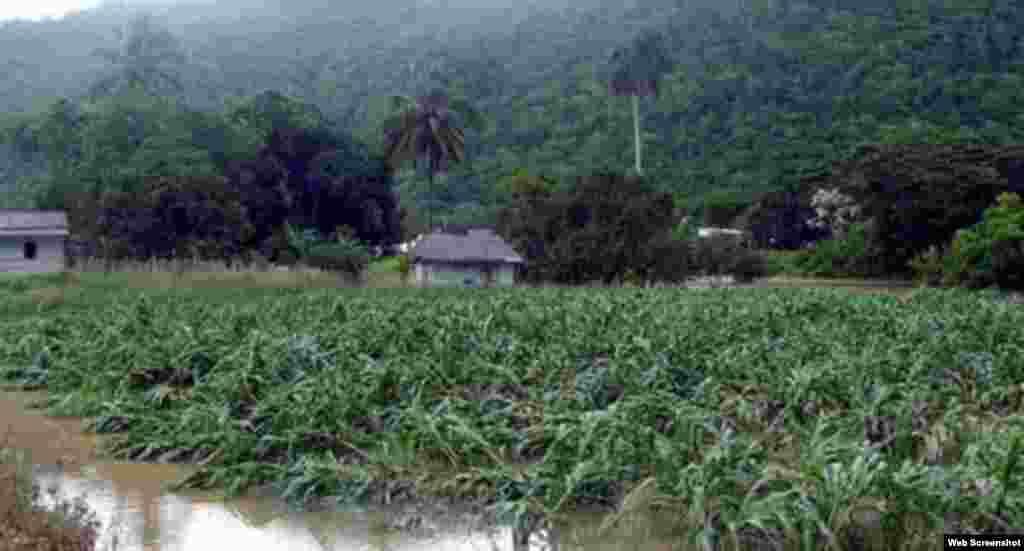Pinar del Río tras el azote de intensas lluvias