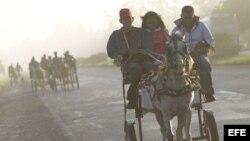 Varios jóvenes viajan en carretones tirados por caballos el viernes 24 de febrero de 2012, en Pinar del Río (Cuba).