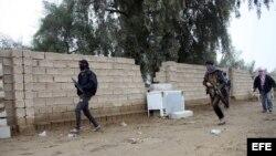 Al Qaeda controla la mitad de la ciudades iraquies de Faluya y Ramada