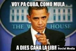 Obama Memes