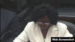 Berta Soler en su comparecencia en el Sub Comité de la Cámara de Representantes de EE.UU. Archivo.