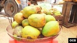 Plátanos en mercado habanero.