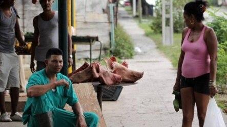 En los mercados de los suburbios de La Habana a veces sólo hay col, boniatos y cabezas de cerdo.