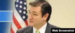 Ted Cruz, aspirante republicano al Senado de EEUU.