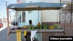 Reporta Cuba. Carretilleros en Camagüey. Foto: Daneibys de la Celda.