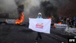 Simpatizantes de la Alianza se manifiestan en Tegucigalpa.
