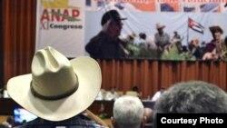 Unos 700 agricultores privados y cooperativistas se reúnen en el XI Congreso de la Asociación Nacional de Agricultores Pequeños, ANAP