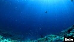 El Niño calienta las aguas del océano Pacífico.