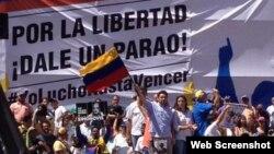 Carlos Vecchio (bandera) dijo presente en la marcha opositora.