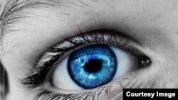 """""""Es un capricho de mi novia. Quiere un ramito de ojos azules"""". Octavio Paz"""