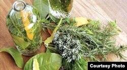 """Algunas plantas se consumen o aplican en la medicina verde; otras se usan para """"limpiezas"""" rituales."""