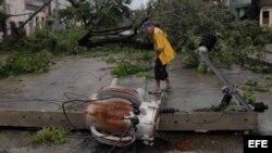 Disidentes y activistas se movilizan para ayudar a afectados por el huracán