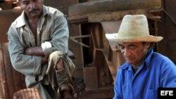 Sustituyen a 632 presidentes de cooperativas agrícolas