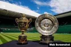 Los trofeos de los finalistas en Wimbledon.