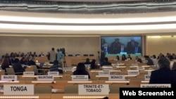 Contacto Cuba | Derechos Humanos a examen