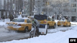 Vista de una zona del Central Park de Nueva York (EE.UU.)