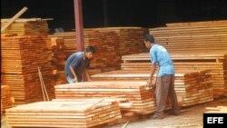 Nicaragua exporta maderas a Cuba.