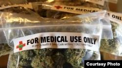 Las urnas desmintieron a las encuestas que pronosticaron la aprobación del uso medicinal de la marihuana en Florida