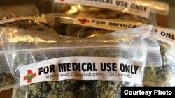 Las urnas desmintieron a las encuestas que pronosticaban la aprobación del uso medicinal de la marihuana en Florida