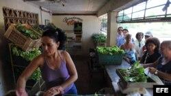 Varias personas compran vegetales en el punto de venta de un huerto urbano en La Habana. Archivo.