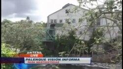 La industria del papel en Cuba: un imperio reducido a escombros