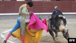 El diestro Álvaro Sanlúcar da un pase con el capote a uno de sus astados durante el duodécimo festejo de la Feria de San Isidro, en Las Ventas, en la que ha compartido cartel con Gonzalo Caballero y César Valencia, con novillos de Nazario Ibáñez.