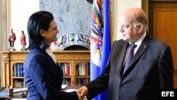José Miguel Insulza estrecha la mano de la vicepresidenta y canciller de Panamá, Isabel Saint Malo