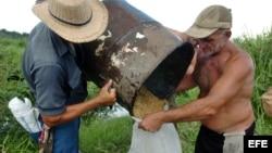 Cooperativas endeudadas incumplen pagos a obreros agrícolas