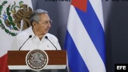Visita de Raúl Castro a México.
