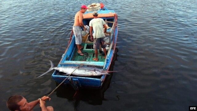 Pescadores en la bahía de La Habana