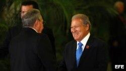 VII Cumbre de Jefes de Estadode la Asociación de Estados del Caribe