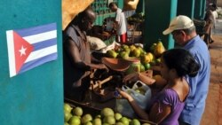 Cuba reconoce lentitud en aplicación del plan de reformas
