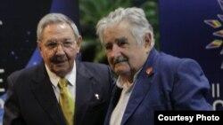 Raúl Castro y José Mujica durante la II Cumbre de la CELAC en La Habana.